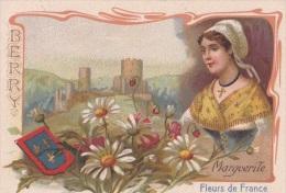 1900 Chicorée à La Française Paul Mairesse Cambrai :fleurs De France: Marguerite : Berry - Non Classés