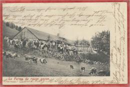 68 - HAUTES VOSGES - ROUGE GAZON - Melkerei - Ferme Auberge - France