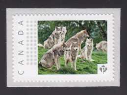 WOLF, Volves Pack, LOUP, LOBO, LUPO, Picture Postage Mint, Unused Stamp, Canada  2014 [p6sn7] - Honden