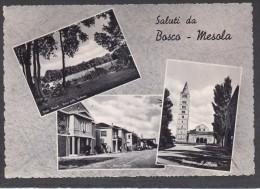 9704-SALUTI DA BOSCO-MESOLA(FERRARA)-FG - Souvenir De...