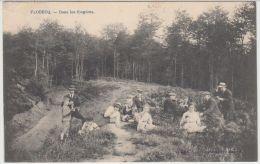 25086g  FOUGERES - PIQUE-NIQUE - Flobecq - Flobecq - Vloesberg