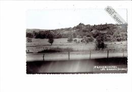 88 - PROVENCHERES LES DARNEY - Vaches Au Pré - Vosges - - Frankreich