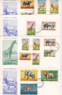 ANCIENNES COLONIES BELGES (RWANDA, BURUNDI, CONGO)  MAMMIFERES AFRICAINS  14 FDC - Francobolli