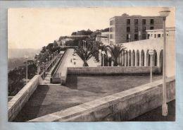 CPSM - Alger - Esplanade De La Cité Diar El Mahcoul - Ed. Solidarité Sportive Fondation Maréchal De Lattre - Alger