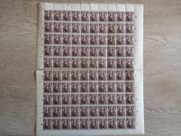 Pays-bas - Netherlands - Feuille Entière -  Super état Voir 1 Scan(s) (  Détaché Sur Le Millieu  ) - 1891-1948 (Wilhelmine)