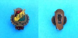 FAD - 1921 ... Hungary Antique Pre-WW2 Enamel Buttonhole Pin * Badge Musique Musik Musica Distintivo Anstecknadel - Musique
