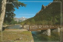 PP974 - POSTAL - PARQUE NACIONAL ORDESA Y MONTE PERDIDO - RIO ARAZAS - Huesca