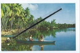 Carte - Baie De Punaauia - Un Aspect De La Vie Tahitienne,la Pêche.Les Pirogues Fournissent Un Aide Appreciable.Tahiti - Polynésie Française
