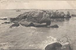 ROYAN - 17 -  CPA DOS SIMPLE De 1904 - Ile Aux Mouettes à VALLIERES   - VAN - - Royan