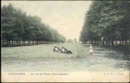 Bruxelles - Koekelberg : Une vue du Plateau - Parc Elisabeth