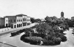 B12708 Bizerte - Le Jardin Public - Tunisie