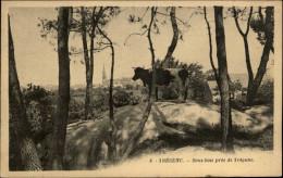 29 - TREGUNC - Vache - Trégunc
