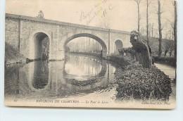 ENVIRONS DE CHARTRES - Le Pont De Lèves. - Lèves