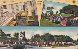 Florida Tampa Auto Haven Approved Member 1949