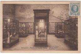 Tervueren, Musée Du Congo Belge, Zaal Der Vogels, Salles Des Oiseaux (pk19313) - Tervuren