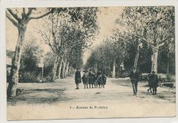 Avenue De RAPHELE (animation) - France