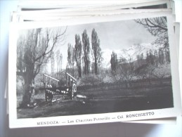 Argentinië Argentina Mendoza Ronchietto Las Chacritas Potrerillo - Argentinië