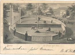 BERNE - SUISSE  -CPA DOS SIMPLE De 1902 - La Fosse Aux Ours - ENCH175 - - BE Berne