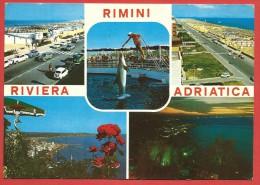 CARTOLINA VG ITALIA - RIMINI - Riviera Adriatica - Delfini - Vedutine - 10 X 15 - ANN. 1969 - Rimini