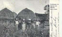 AFRIQUE -   SIERRA LEONE - Groupe D'indigénes Dans Un Village - Gros Plan - Sierra Leone