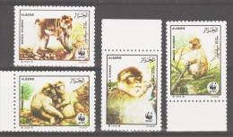Algeria 1988 Algerien Mi 972-975 Worldwide Conservation: Magot / Weltweiter Naturschutz: Magot **/ MNH - W.W.F.