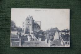 MONTARGIS - Le Chateau - Montargis