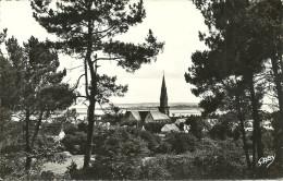 ARRADON - Vue Sur L'Eglise Et Le Golfe                   -- Gaby 2          Cpsm - Arradon