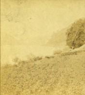 Allemagne Rheinstein Paysage Ancienne Photo Stereoscope Braun 1860 - Stereoscopic