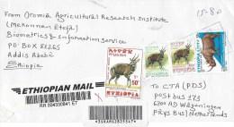 Ethiopia 2010 Aratkilo Counter 5 Bushbuck Rhinoceros Barcoded Registered Cover - Ethiopië
