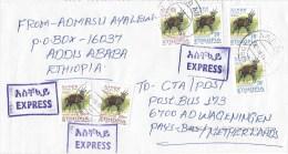 Ethiopia 2014 Addis Ababa 14 Bushbuck Express Cover - Ethiopië
