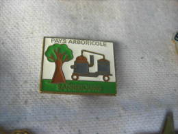Pin´s SARREBOURG, Pays Arboricole - Food