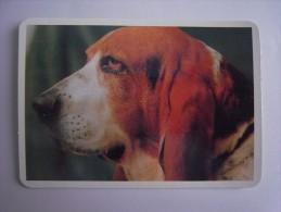 1 CALENDAR SMALL - ANIMAL CÃO CAO DOG CHIEN CANE HUND HOND PERRO - Calendarios