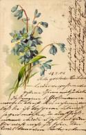 CPA   Allemagne---fleurs Bleues---1901 - Fleurs, Plantes & Arbres
