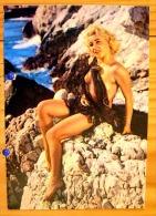 PIN UP FEMME  SEMI NUE BLONDE PULPEUSE SEINS NUS FILET DE PECHE VINTAGE ANNEES 50 N° 209 - Pin-Ups