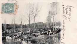 Cpa  36  Environs D'argenton , La Foire Du Pont - Autres Communes