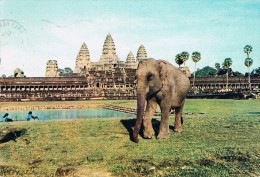 SIEMREAP (Cambodge) - Eléphant Domestique Devant Angkor-Vat - Circulé 1970, 2 Scans - Cambodia