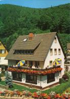 Bad Rippoldsau Schapbach - Haus Rosel - Bad Rippoldsau - Schapbach