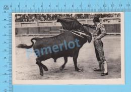 "CorridaTaureau (Real Photo Réelle,"" Pase Por Alto "" ) Post Card Carte Postale 2 Scans - Corrida"