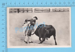 """CorridaTaureau (Real Photo Réelle, """" Lance De Capa """" ) Post Card Carte Postale 2 Scans - Corrida"""