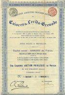 S. A. MINIERE DES CUIVRES DE LERIDA - GRENADE - Bergbau
