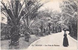 06. MENTON. Une Allée De Palmiers. 22 - Menton