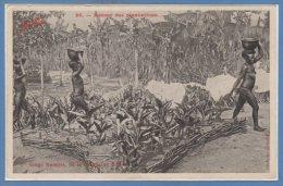 AFRIQUE - TCHAD --Con Congo Français De La Sangha - Retour Des Plantations - Tchad