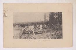 CPA  A.TARCHETTI, IN RIVA ALLO STAGNO En 1911!!(voir Timbre) - Non Classificati