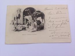 Algérie, 1900, Type Sage, Carte Postale Cad Biskra Constantine: Méharis- Chameaux (Camel, AK, Post Card)