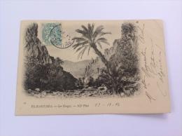 "Algérie, 1904, Carte Postale ""El-Kantara"" > Hodeidah, Jemen Via Aden Cad Constantine (AK, Post Card)"