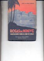 """ROSAS DE NINIVE: MEDITACIONES SOBRE EL LIBRO DE JONAS"" ESCRITO GABRIEL DE BIURRUN GARMENDIA.GECKO. - Culture"