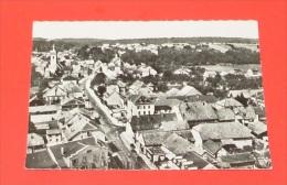 En Avion Au Dessus De Delle - ( Territoire De Belfort )   ------- 288 - Delle