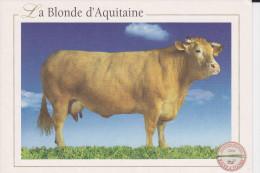 CPM VACHE LA BLONDE D AQUITAINE RACES A VIANDE 2004 - Vaches