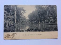 AK    MAURITIUS   PAMPLEMOUSSES   1909 - Mauritius