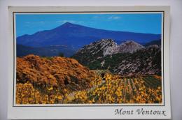 CP Le Mont Ventoux (84. Vaucluse) - Le Géant De Provence Et Les Dentelles De Montmirail - Francia